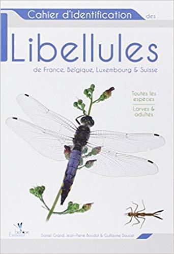 Les libellules, indicatrices du changement climatique