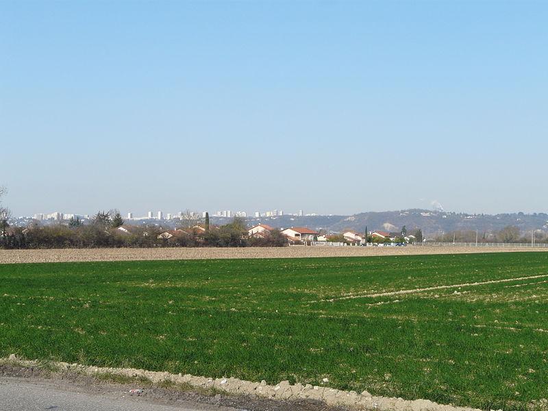 Lyon : les candidats verts veulent soutenir les paysans de la Métropole