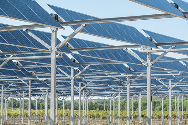 L'agrivoltaïsme et Sun'Agri boostés par l'appel d'offres «solaire photovoltaïque innovant».