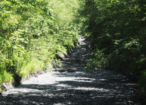 Cours asséché d'un torrent de montagne - ©Bruno Mortgat - Enviscope.com