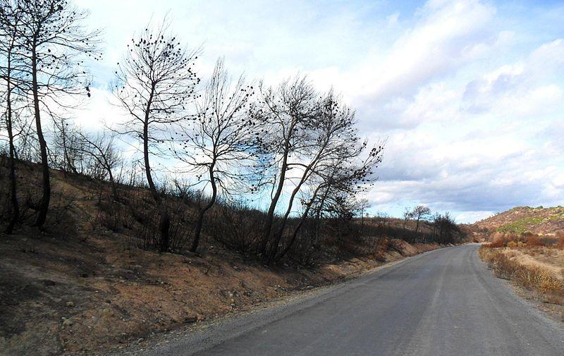 Feux de forêts : la Drôme en alerte