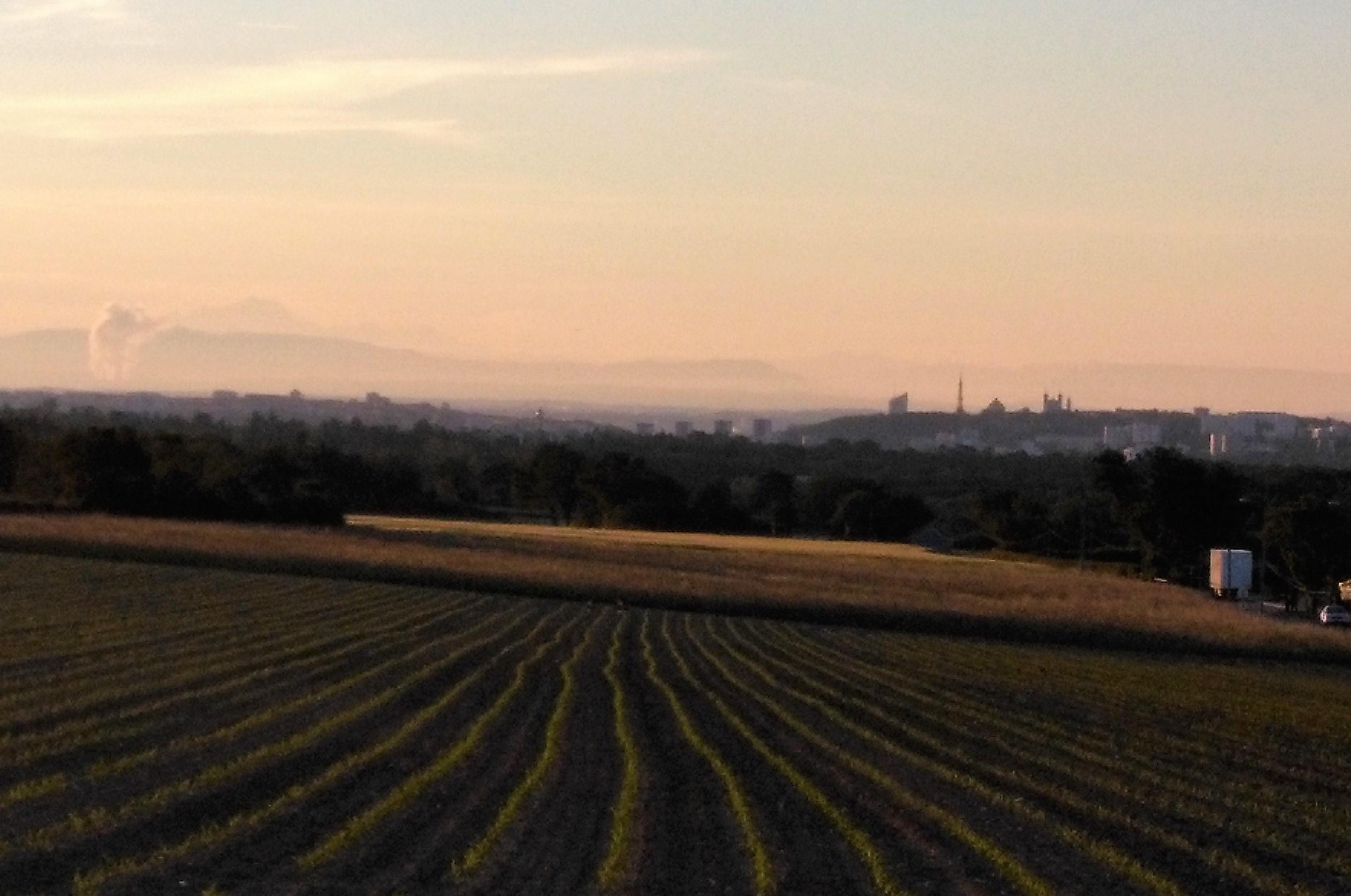 Agriculture périurbaine : un appel à projets de la Métropole de Lyon