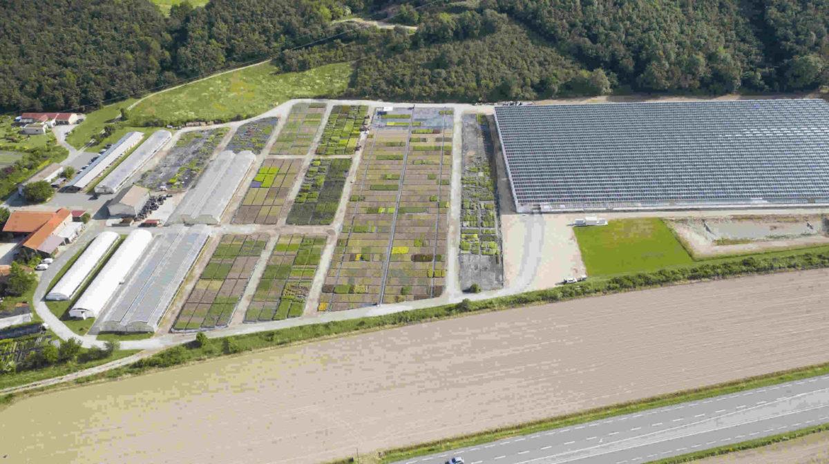 Une serre solaire de deux hectares en Isère